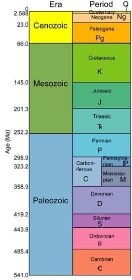 phanerozoicsm